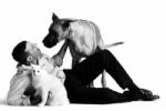 Lançado Site dedicado ao Animal de Estimação