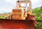 Crise reduz desflorestação na Amazónia