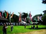 Boom Festival ganha «Greener Festival Award»