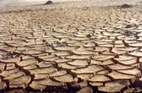 Milhares de pessoas morrem anualmente devido às catástrofes