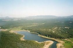 Projecto ecológico melhora condições da Lagoa Pequena