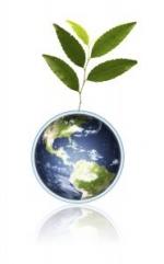Comemora-se hoje o dia da Terra