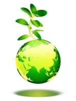 Quercus enumera 7 pecados ambientais de Portugal no dia da Terra