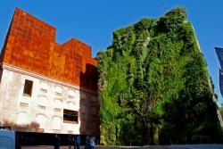 Jardins verticais na cidade estão a expandir-se
